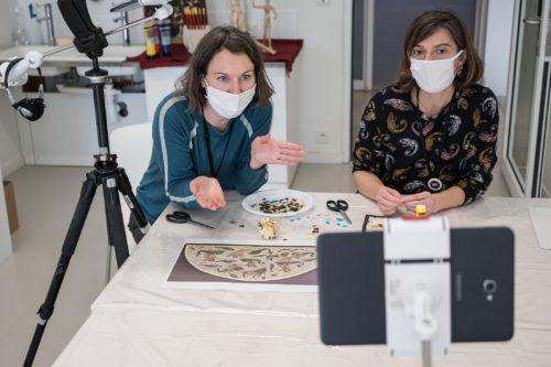 Ateliers à distance - Louvre-Lens